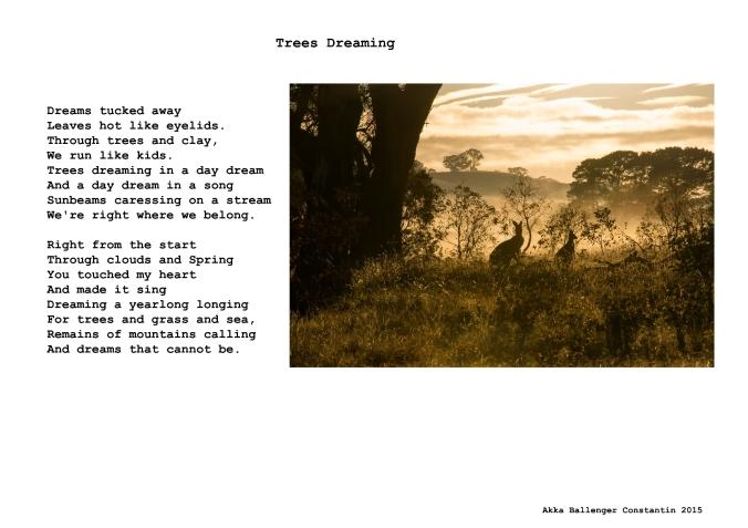 Trees dreaming.jpg