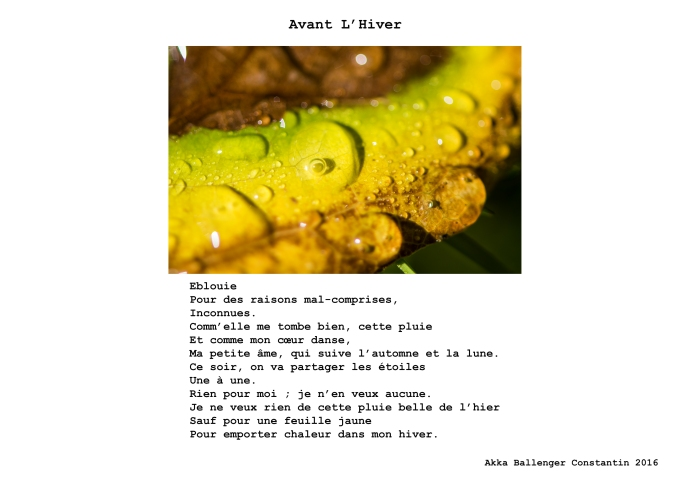Anant Lhiver
